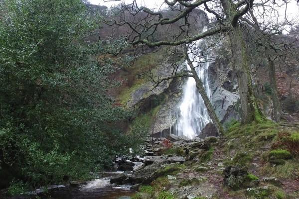 cascada powercourt con rio irlanda