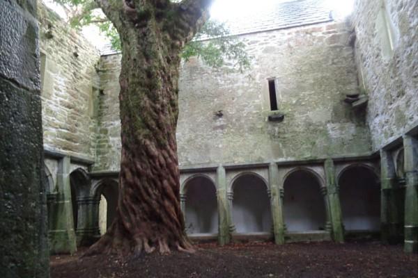 muckross abadia patio killarney irlanda
