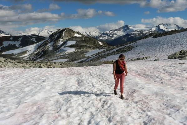 nieve en la montaña en verano en whistler canada
