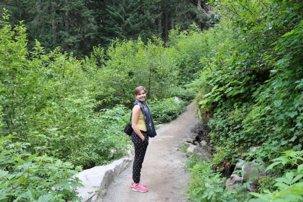 camino en la montana lagos joffre