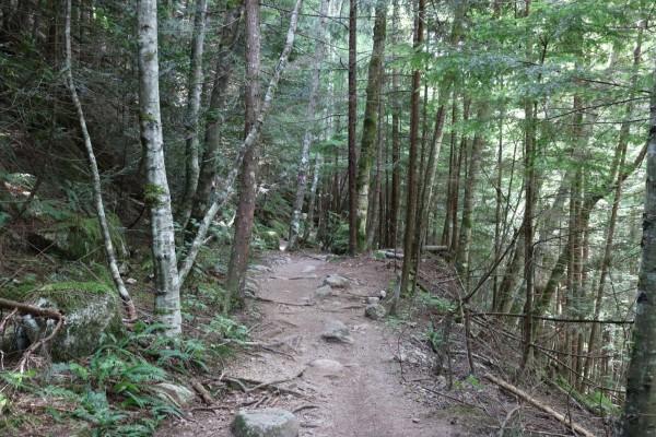 caminos en canada squamish