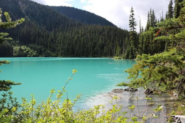 donde esta el parque provicial joffre lagos