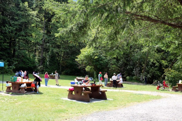 que hacer en el parque provicial de shannon squamish canada