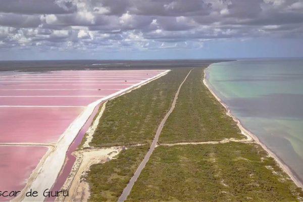 mar rosa lago rosa en mexico porque las coloradas son rosa yucatan