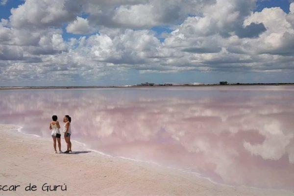 porque las coloradas son rosa yucatan